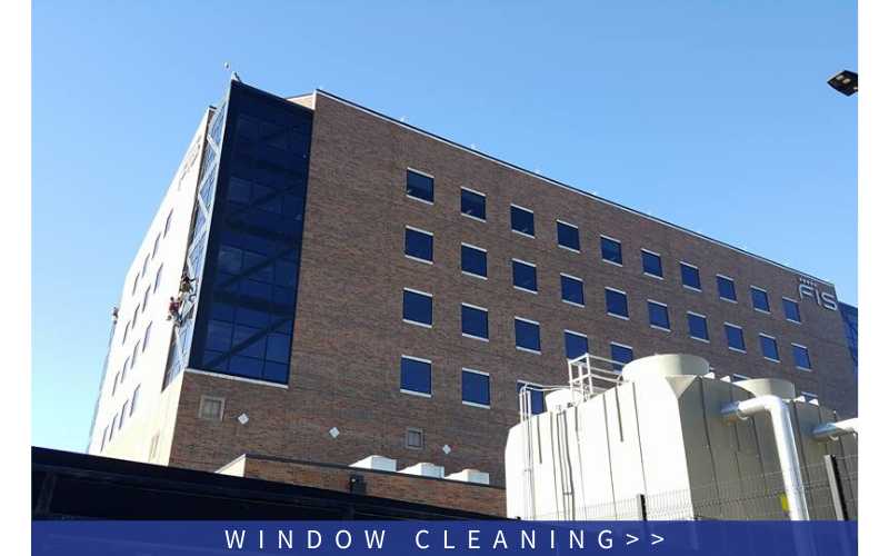 Click here to explore our window cleaning services